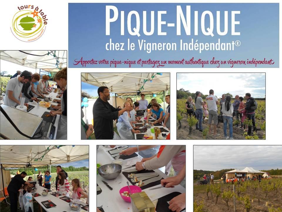 Photos Pique-Nique VIF 2015 (1)